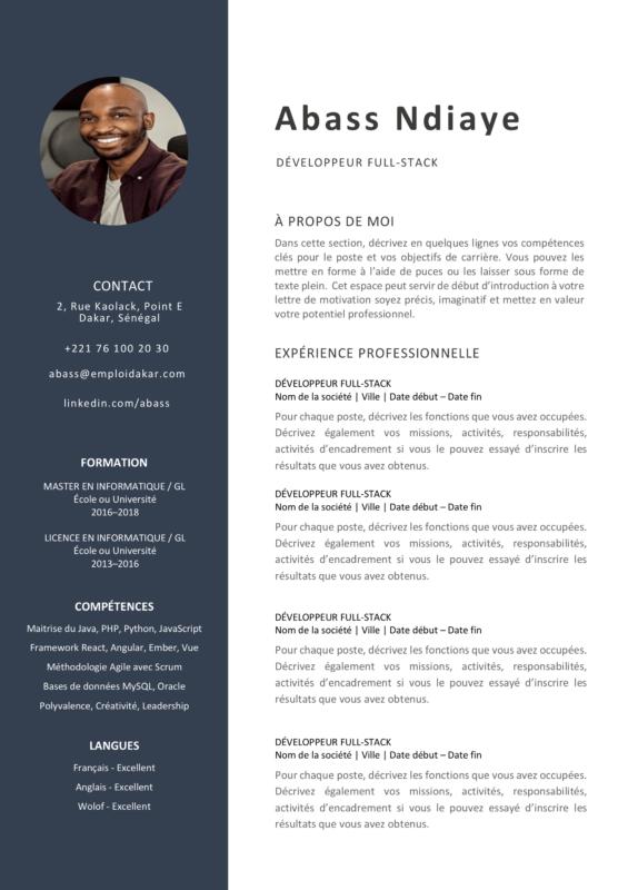 Exemple de CV Développeur Web (Full Stack, Front-End, Back ...